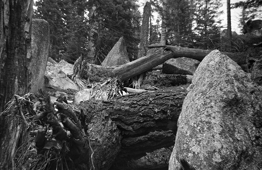Yosemite 02